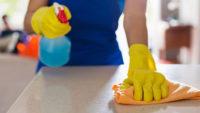 Holandia praca bez języka dla Pani przy sprzątaniu w Maasbree od zaraz