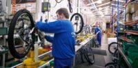 Produkcja rowerów praca w Holandii od zaraz bez wiekówki w Wassenaar