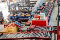 Sortowanie owoców-warzyw od zaraz dam fizyczną pracę w Holandii bez języka, Venlo