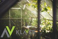 Ogrodnictwo oferta pracy w Holandii od zaraz bez języka przy likwidacji szklarni w Steenbergen