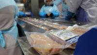 Pakowanie mięsa drobiowego dam pracę w Holandii dla par od zaraz, Rossum