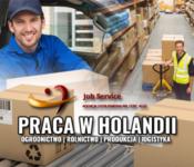 Pracownik wielobranżowy oferta pracy w Holandii na produkcji, magazynach Zaltbommel