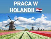 Dam pracę w Holandii 2021 bez języka dla każdego, pary mile widziane