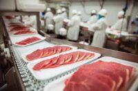 Dam pracę w Holandii bez języka pakowanie mięsa praca z nożem Gouda