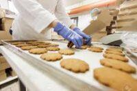 Bez języka oferta pracy w Holandii przy pakowaniu ciastek od zaraz Oldenzaal