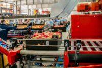 Sortowanie owoców od zaraz fizyczna praca w Holandii bez języka Venlo 2021