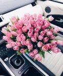 Bez języka dam pracę w Holandii od zaraz przy produkcji bukietów kwiatowych, Bleiswijk