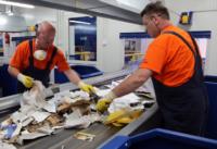 Bez języka fizyczna praca w Holandii pracownik sortowni odpadów od zaraz, Son