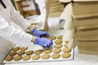 Pakowanie ciastek oferta pracy w Holandii od zaraz bez języka w Harderwijk 2021