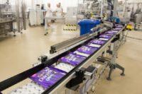Produkcja czekolady Holandia praca bez znajomości języka od zaraz fabryka Haga