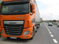 Od zaraz oferta pracy w Holandii kierowca kat. C+E transport kwiatów, Brakel