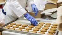 Pakowanie ciastek dam pracę w Holandii od zaraz z językiem angielskim, Houten