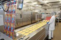 Praca w Holandii od zaraz pakowanie serów w Almere z językiem angielskim