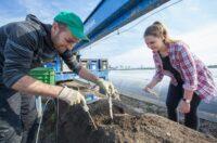 Bez języka oferta sezonowej pracy w Holandii zbiory szparagów od zaraz Horst 2021