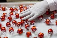 Dla par praca Holandia przy pakowaniu słodyczy bez znajomóści języka od zaraz w Amsterdamie