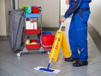 Oferta pracy w Holandii przy sprzątaniu obiektu od zaraz z j. angielskim w Veghel