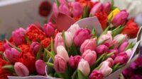 Dam pracę w Holandii dla par przy układaniu bukietów kwiatowych bez języka, Bleiswijk