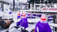 Bez znajomości języka Holandia praca od zaraz przy produkcji detergentów fabryka Nijmegen