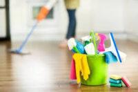 Sprzątanie bez znajomości języka praca w Holandii od zaraz Horst 2021