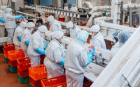 Praca w Holandii od zaraz na produkcji żywności bez znajomości języka, Zevenaar