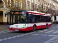 Kierowca autobusu z kat.D do pracy w Holandii od zaraz, Venlo