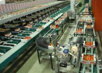 Dam pracę w Holandii od zaraz dla operatora maszyn pakujaco-sortujacych, Dinteloord